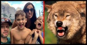 ოჯახი ბუნებაში მგლის თავდასხმის მსხვერპლი გახდა.  აი, როგორ მოიქცა მამა...