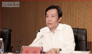 ჩინელი თანამდებობის პირის სარდაფში 13 ტონა ოქრო აღმოაჩინეს(ვიდეო)