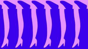 რამდენ ფეხს ხედავთ? – შეამოწმეთ სწრაფად მუშაობს  თუ არა თქვენი ტვინი