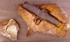 """""""ლონდონური ჩაქუჩი"""" - 145 მილიონი წლის არტეფაქტი?"""