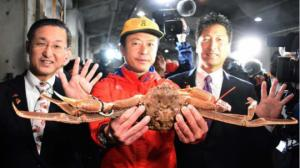თოვლის კრაბი, რომელიც  46000 დოლარად, რეკორდული მაჩვენებლით გაიყიდა იაპონიაში