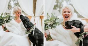 პატარძლის პირველი ფოტოსესია საყვარელ ძაღლთან
