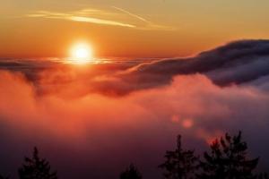 მზე მაქსიმალურად მიუახლოვდა დედამიწას