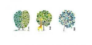 აირჩიეთ ხე და თქვენი ხასიათის ყველაზე გასაოცარი თვისება გამოავლინეთ