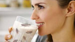 ტარაკნის რძე - შეუცვლელი  ჯანმრთელობის ელექსირი