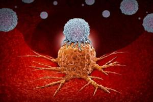 ყველა სახის სიმსივნის განკურნების პრინციპი აღმოჩენილია და უკვე იტესტება