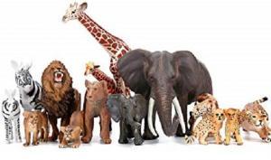 ძალიან  საინტერესო ფაქტები ცხოველებზე