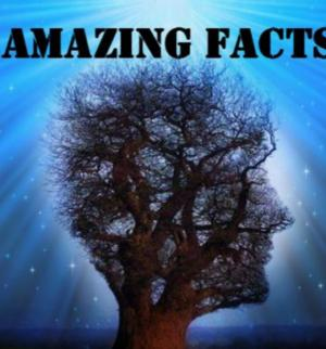 10 გასაოცარი ფაქტი სამყაროში