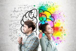 მამაკაცის ტვინი ქალის ტვინზე მეტად  მამრი მაიმუნის ტვინს  ჰგავს