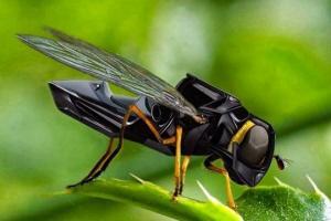 რობოტი-ფუტკარი: მეცნიერების ახალი გამოგონება, რომელსაც ყვავილების დამტვერვა შეუძლია