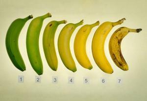 როგორი ბანანი იჭმევა: მწვანე თუ ყვითელი მუქ ლაქებიანი