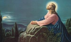 """""""ღმერთს თავიდან ოცდაათი წლის სიცოცხლე დაუდგენია კაცისთვის..."""""""
