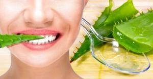 როგორ მოქმედებს ალოე კბილებსა და ღრძილებზე? ის რაც აუცილებლად უნდა იცოდეთ