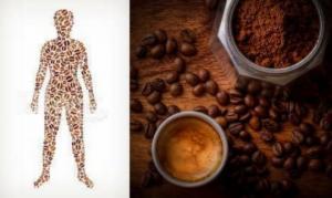 რა მოსდის ჩვენს ორგანიზმს ყავის სმით? რეალობა რომელიც გაგაოგნებთ