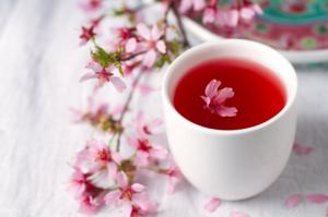 ალუბლის ყვავილები - უნიკალური სამკურნალო თვისებების მქონე საშუალება