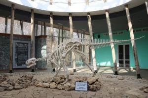 დინოზავრის 2 მილიონი წლის წინანდელი ნაკვალევი სათაფლიაში