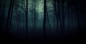 ჩვენი პლანეტის 7 ყველაზე საშიში და უცნაური ტყე