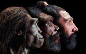 როდის და ვისგან წარმოიშვა თანამედროვე ადამიანი?
