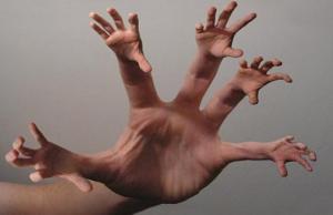 ადამიანის სხეულის რომელ ნაწილს შეუძლია რეგენერაცია (თვითაღდგენა)
