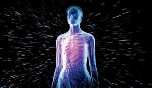 5 გასაოცარი ფაქტი ადამიანის სხეულის შესახებ