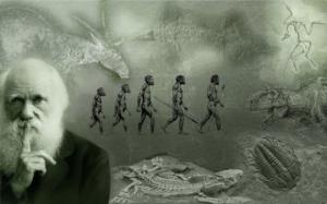 ადამიანის ევოლუცია უძველესიდან უახლეს დრომდე