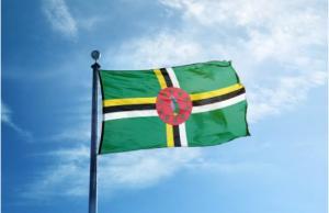 აკრძალული ფერი დროშაზე