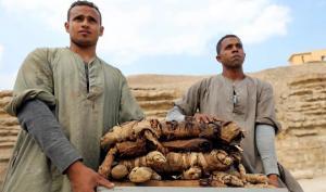 «სიკვდილის ინდუსტრია» —  რატომ ყიდულობდნენ ევროპელები  შუა საუკუნეებში მუმიებს