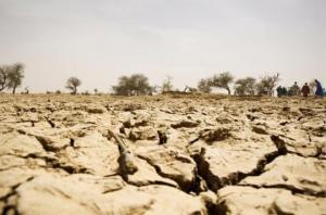 10 სამწუხარო ფაქტი შიმშილის და კლიმატის ცვლილების შესახებ