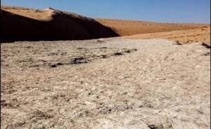 საუდის არაბეთში 120 000 წლის წინანდელი ადამიანების ნაფეხურები აღმოაჩინეს