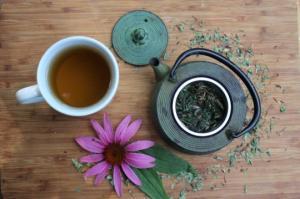 სამკურნალო მცენარე ექინაცეა -  ნაყენის  მომზადება, სასარგებლო თვისებები და რა უნდა ვიცოდეთ მისი მიღებისას
