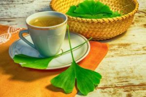 სამკურნალო მცენარე  გინკგო ბილობა -  ნაყენის  მომზადება, სასარგებლო თვისებები და რა უნდა ვიცოდეთ მისი მიღებისას