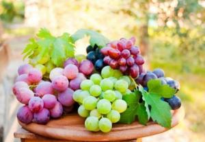 რას ვნებს და რას კურნავს ყურძენი? აუცილებლად წასაკითხი