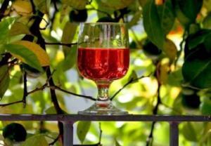 რისგან ამზადებდნენ ღვინოს ალპების მთებში და ვინ და როდის შეიტანა შვეიცარიაში ვაზის კულტურა?