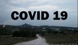 კორონავირუსის 63 დადასტურებული შემთხვევაა დედოფლისწყაროში; გამოჯანმრთელდა - 16