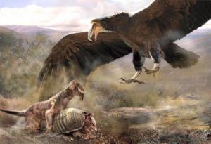 სად ცხოვრობდა და რამდენს იწონიდა ყველა დროის უდიდესი ფრინველი, რომელსაც ცაში ნავარდი შეეძლო?
