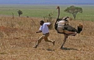 ასეთი რამ მხოლოდ აფრიკაშია შესაძლებელი...