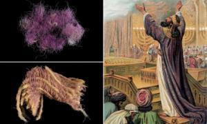 ისრაელის არქეოლოგებმა აღმოაჩინეს 'ბიბლიური სამეფო მეწამული საღებავი'