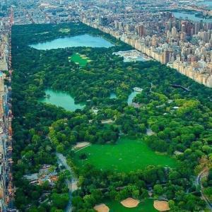 ნიუ იორკის მეტროპოლიტენში აღმოჩენილია 12 152 სიცოცხლის ფორმა (მწერების და ბაქტერიების ჩათვლით)