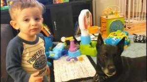 დიალოგი პატარა ბიჭსა და ძაღლს შორის: მათ შორის ნამდვილად არის უხილავი კავშირი