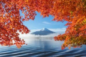 ტოკიოს 2020 წლის საერთაშორისო ფოტოდაჯილდოების საუკეთესო ნამუშევრები
