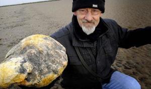 სანაპიროზე ნაპოვნი უსიამოვნო სუნის მქონე ქვა, რომელიც ათასობით დოლარი ღირს
