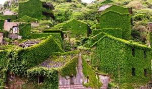 ხავსში ჩაფლული სოფელი-მოჩვენება ჩინეთში, სადაც ბუნებამ ადამიანებზე გაიმარჯვა