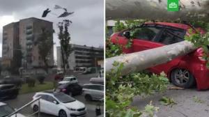 ვიდეო: სოხუმში ძლიერი ქარიშხალის შედეგები გადაიღეს