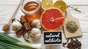 რომელი ბუნებრივი ანტიბიოტიკებით უნდა გავიძლიეროთ ჯანმრთელობა და ავიმაღლოთ იმუნიტეტი?