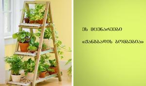 მცენარეები, რომლებიც ყველას სახლში უნდა იყოს  (NASA–ს რეკომენდაცია)