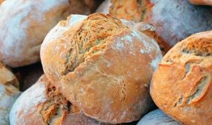 ვამსხვრევთ მთავარ  მითს პურის შესახებ