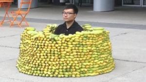 15 აბსურდული ფოტო, რომლის გადაღებაც მხოლოდ აზიაში შეიძლებოდა