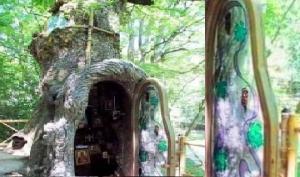 ტაძარი ხეში და  ოთხსაუკუნიანი მუხის ახალი ისტორია -  ეს საქართველოა