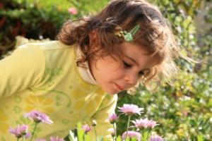 თუ სახლში ბავშვია-ეს უნდა იცოდეთ.ოთახის საშიში მცენარეები.