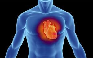 გულის მაქსიმალურად ამუშავების საშუალებები